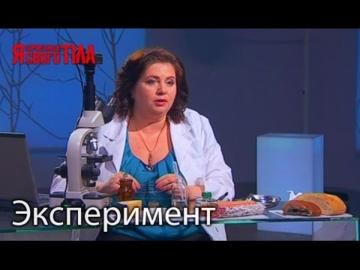 Эксперимент - Холодильник